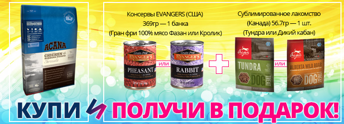 Баннер 690x250 для acana.ru