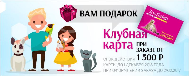 Баннер 800x324 для zoolife174.ru